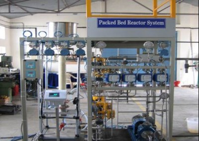 Packed Bed Reactor System