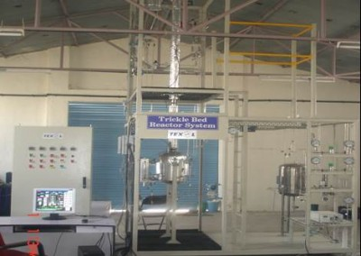 Trickle Bed Reactor System