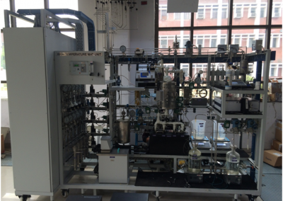 High Temperature Fixed Bed Micro Reactor Unit