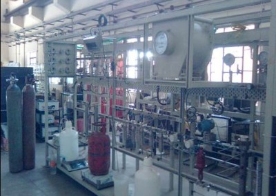 Steam Reforming Unit for Catalyst Evaluation